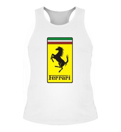 Мужская борцовка Ferrari Italia