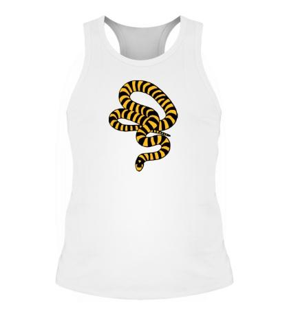 Мужская борцовка Полосатая змея