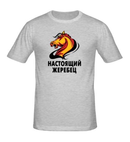 Мужская футболка Настоящий жеребец