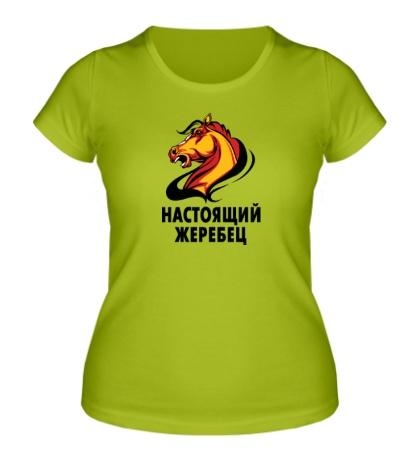 Женская футболка Настоящий жеребец