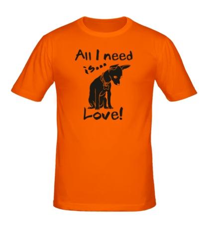 Мужская футболка All i need is love