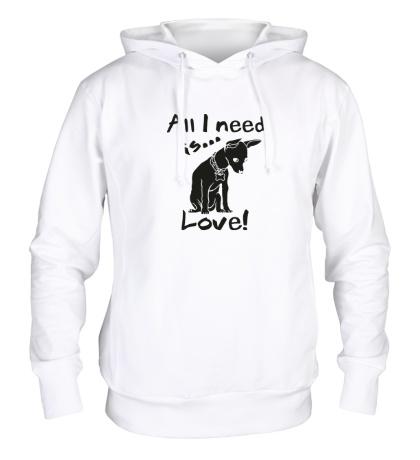 Толстовка с капюшоном All i need is love