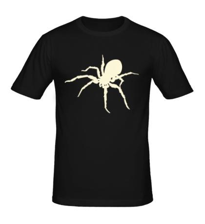 Мужская футболка Ядовитый паук, свет