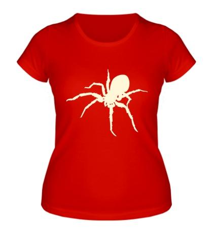 Женская футболка Ядовитый паук, свет