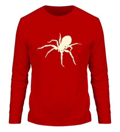 Мужской лонгслив Ядовитый паук, свет