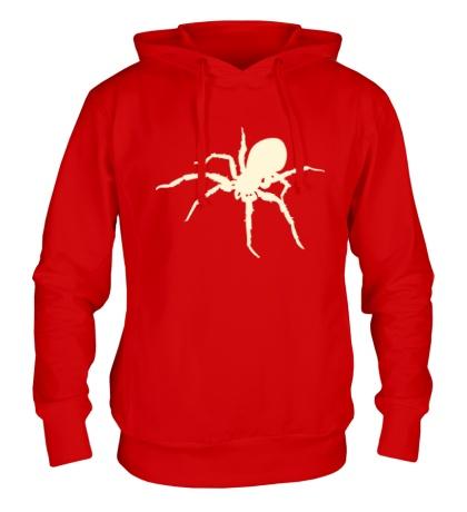 Толстовка с капюшоном Ядовитый паук, свет