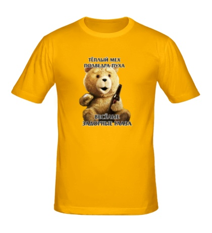 Мужская футболка «Медведь Тэд»