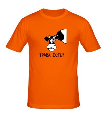 Мужская футболка Трава есть?