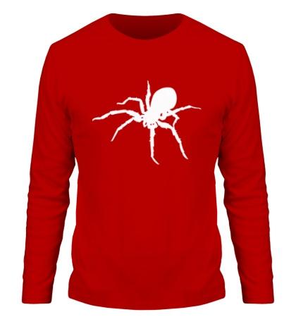 Мужской лонгслив Ядовитый паук