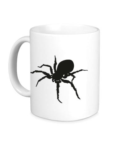 Керамическая кружка Ядовитый паук