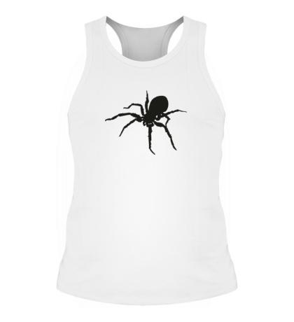 Мужская борцовка Ядовитый паук