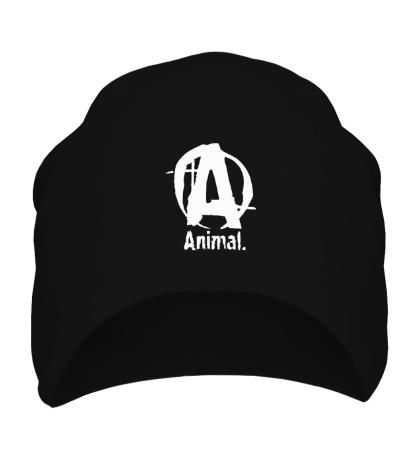 Шапка Animal Logo