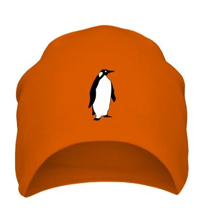 Шапка Пингвин наблюдает