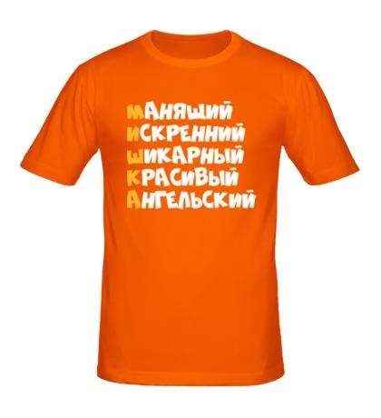 Мужская футболка Комплименты Миша