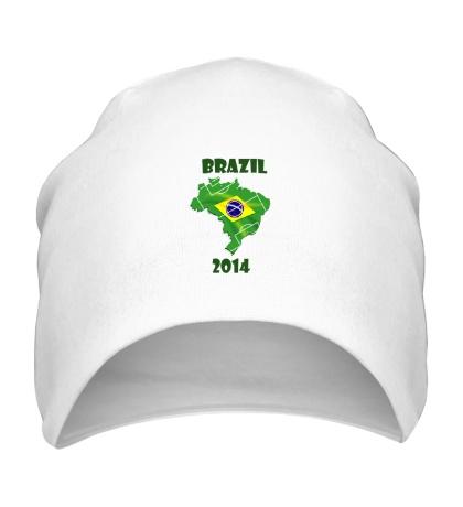 Шапка Brazil Championship 2014