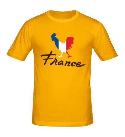 Мужская футболка France
