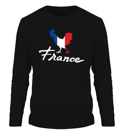 Мужской лонгслив France