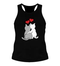 Мужская борцовка Влюбленные котята