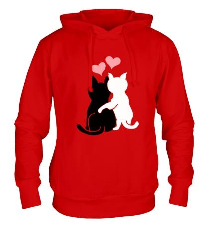 Толстовка с капюшоном Влюбленные котята