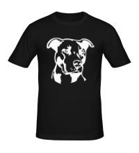 Мужская футболка Питбуль