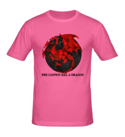 Мужская футболка Герб драконов