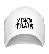 Шапка Zion Train