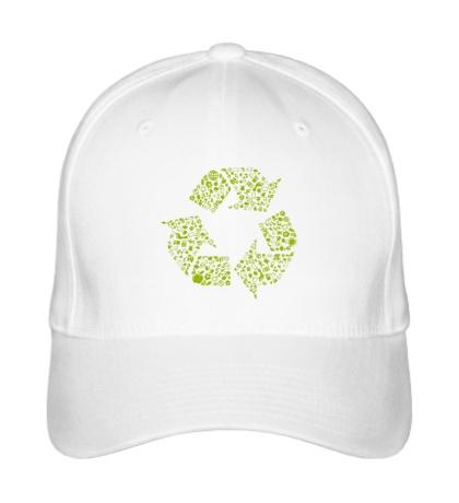 Бейсболка Экология