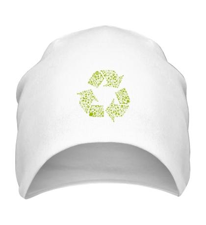 Шапка Экология