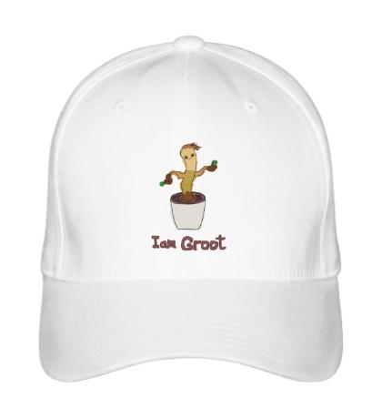Бейсболка I am Groot