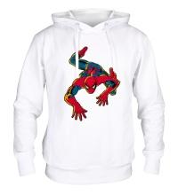 Толстовка с капюшоном Spider-Man