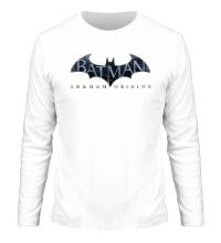 Мужской лонгслив Batman: Arkham Origins