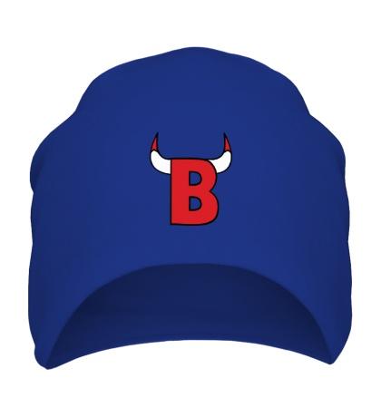 Шапка B-Bulls