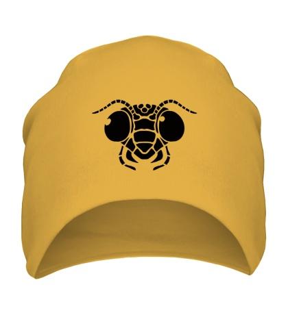 Шапка Голова муравья