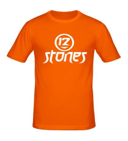 Мужская футболка 12 Stones