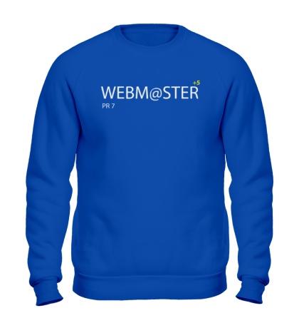 Свитшот Pro Webmaster