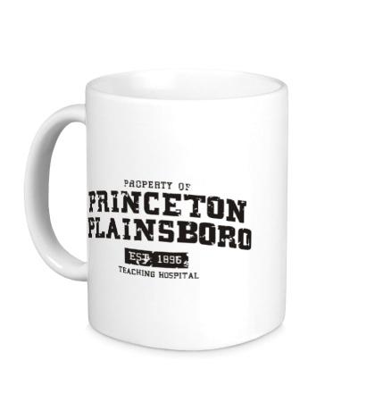 Керамическая кружка Princeton Plainsboro