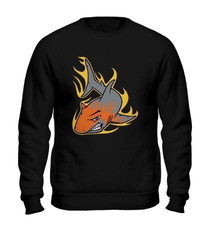 Свитшот Огненная акула