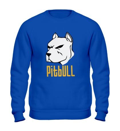 Свитшот Pitbull
