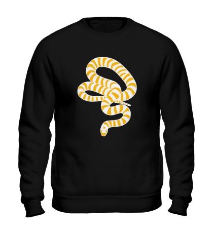 Свитшот Полосатая змея