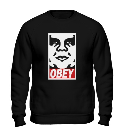 Свитшот Obey the Giant