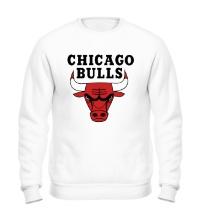 Свитшот Chicago Bulls