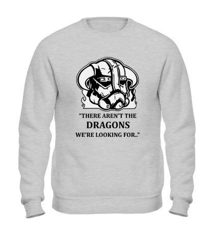 Свитшот There arent Dragons
