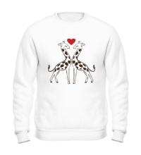 Свитшот Влюбленные жирафы