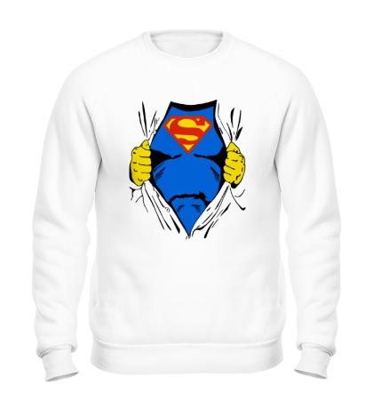Свитшот Костюм супермена