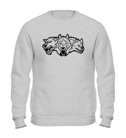 Свитшот Разъяренные волки