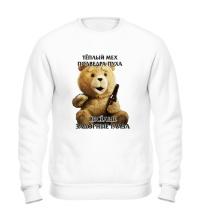 Свитшот Медведь Тэд