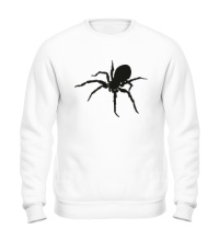 Свитшот Ядовитый паук