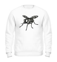 Свитшот Рентген мухи