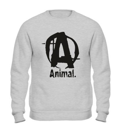 Свитшот Animal Logo