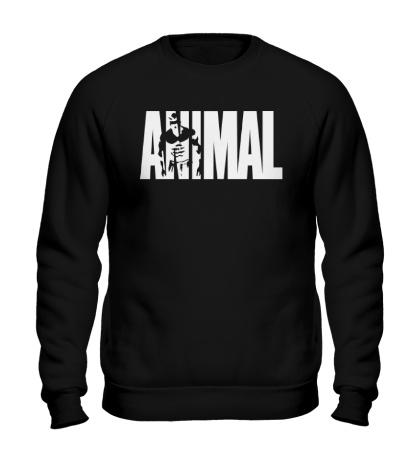 Свитшот Animal Bodybuilding